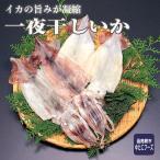 特産品でもある、イカの街としても有名な函館。 函館で獲れた新鮮ないかの旨味が凝縮された、 いかの一夜...