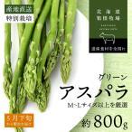 アスパラ 北海道産 ギフト お取り寄せ グリーン アスパラガス 早期予約 M-L 400g×2束 バーベキュー 食材 BBQ