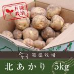 じゃがいも 北海道 バーベキュー BBQ 北あかり キタアカリ ジャガイモ 5kg M-2L 9月10日発売予定