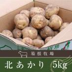 じゃがいも 北海道 バーベキュー BBQ 北あかり キタアカリ ジャガイモ 5kg M-2L 特別栽培 9月10日発売予定