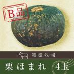 B級品 野菜 かぼちゃ 北海道産 栗ほまれ 4玉入 南瓜