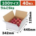 (無地段ボール)A式りんご白無地5kg / 40枚入(L-2234)