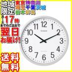 キングジム/電波掛時計 ザラ-ジ/GDK-001