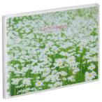 ハクバ Pポケットアルバム NP ポストカードサイズ 横 20枚収納 白い花畑 APNP-KGY-SHB 4977187527346