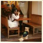 CD)岡村靖幸/Me-imi Premium Edition (UMCK-1240)