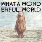 CD)堀込泰行/What A Wonderful World (COCP-40488)
