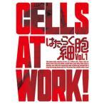 DVD)はたらく細胞 1〈完全生産限定盤〉(初回出荷限定) (ANZB-14701)