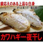 沙猛鱼 - 【カワハギ一夜干し150g】