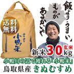 新米 令和1年度産 鳥取県産 きぬむすめ 27kg 白米・30kg 玄米 為計田さん家のお米シリーズ 送料無料