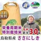 新米 26年 特別栽培米 減農薬 減肥料 鳥取県産 ささにしき 30kg 玄米・27kg 白米 谷本さん家のお米シリーズ 送料無料