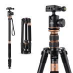 アルミ合金 4段 三脚 一脚可変式&ボールヘッド 雲台 マグネシウム デジタル/一眼レフカメラ Canon Nikon Petax Sonyなど用 ゴールド