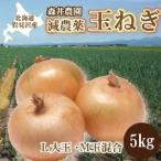 減農薬栽培 タマネギ 10kg入り【L玉・M玉混合】 産地:北海道 岩見沢市