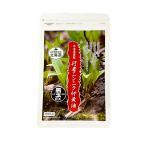 初回限定 1000円 北海道謹製 行者ニンニク卵黄油黒玉EX  疲労回復サプリ