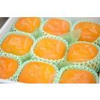 クイーンパーシモン通販 和歌山県平核無柿の特大サイズの柿を販売取寄。約8玉〜約12玉 和歌山産