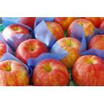 シナノドルチェりんご取寄販売 長野オリジナルシナノリンゴを通販で。約5kg 約14玉〜約20玉 長野県産