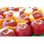 紅いわてりんご取寄販売 岩手県オリジナルの紅りんごを通販で。約5kg 約14玉〜約18玉 岩手県産