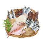【紀州尾鷲の干物】干物詰合10品(送料無料)