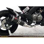 Z125 PRO(プロ)BR125H DDRタイプマフラー EVOタイプ ブラックカーボンバージョン フルエキゾースト ASAKURA(浅倉商事)
