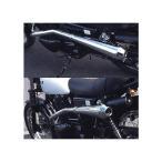 スポーツマフラー PH01 スチール製(マフラーガード付き) PurPleHaze(パープルヘイズ) 250TR