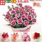 母の日 カーネーション5号 選べる生花と造花
