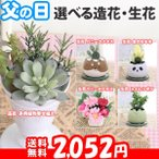 母の日 カーネーション5号 選べるプリザーブド、生花、造花 プレゼント 花 ギフト