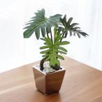 人工観葉植物 「フィロデンドロセローム」 インテリア プレゼント 室内