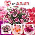母の日 5号カーネーション 選べる生花と造花