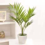 アートグリーン 「テーブルヤシ」 観葉植物 造花 テルクリン