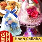 誕生日 花とスイーツ 薔薇 ガラスドーム アレンジメント 光る