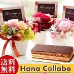 チョコレート ケーキ プレゼント お祝い 結婚祝い バラ 薔薇