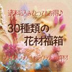 Yahoo!プリザーブドフラワーはなこ送料無料 お得なハーバリウム花材の詰め合わせ 30種類の花材福箱 プリザーブドフラワー ドライフラワー