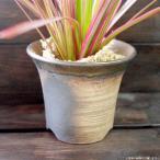 プランター おしゃれ 植木鉢 陶器 萬古焼の陶器の小さな植木鉢 トール ブラウン 3.5号