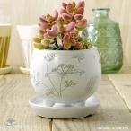 植物柄の丸くて可愛いおしゃれな陶器のプランター・植木鉢