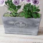ショッピングプランター プランター おしゃれ 植木鉢 セメント鉢 スイートホームガーデンレクトポット 約W20.5×D11.5×H9.5cm