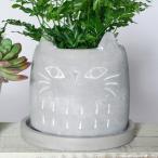 プランター おしゃれ 植木鉢 セメント製 ネコポット シャットグリーズ 約3.5号