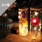 LEDドライフラワーボトル ライト 自宅 プレゼント 誕生日 インテリア おしゃれ  雑貨 LED ハナミーツ ドライフラワー ガラスボトル