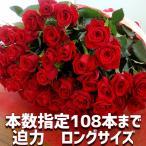 バラ 花束 50本 花色おまかせ5980円 108本 還暦祝い  お祝 誕生日 卒業 入学 歓送迎 ロングサイズ 50cm