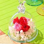 ベアグラス(ガラスドーム)・プリンセスレッド 誕生日プレゼント 女性 結婚祝い 結婚記念日 ブリザードフラワー 新築祝い お祝い プリザ