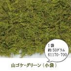 山ゴケ グリーン (小袋)約50g