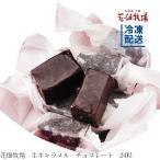 花畑牧場 生キャラメル チョコレート24粒【冷凍配送】