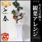 お正月飾り(生花) お正月ガジュマル陶器鉢 高さ100cm×幅27cm×奥行30cm