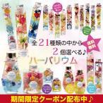 送料無料 ハーバリウム NEW 19種類の中から自由に選べる2点セット!!   Moon・Candy・Forest・Fantasia・Drop