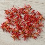 大特価 即日  造花 YDM パイナップルリリー オレンジ 80個 FLP1010OR 00  造花 花材「は行」 その他「は行」造花花材