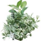 即日  造花 YDM グリーンマットミント ホワイトグリーン GLA-1401-WGR 00   造花葉物、フェイクグリーン ミント