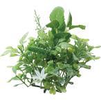 即日  造花 YDM グリーンマットミント グリーン GLA-1402-GR 00   造花葉物、フェイクグリーン ミント