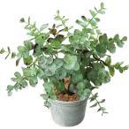 人工観葉植物 YDM ユーカリポット グレー GLA-1493-GRY 人工観葉植物 カジュアルポット 卓上向け
