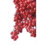即日  プリザーブド 大地農園 ペッパーベリー プリザーブド 55g レッド 03380-300 00  プリザーブド実もの ペッパーベリー