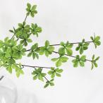 即日 造花 アスカ ドウダン #051A グリ−ン A-41834-051A 造花枝物 ドウダンツツジ