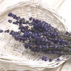 即日  ドライ コアトレーディング ラベンダーEUエクストラブルー ナチュラルブルー 約25g 17516 00  ドライフラワー花材