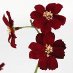 即日  造花 FIAN チョコレートコスモス RED FS0019-RED 00   造花 花材「か行」 コスモス